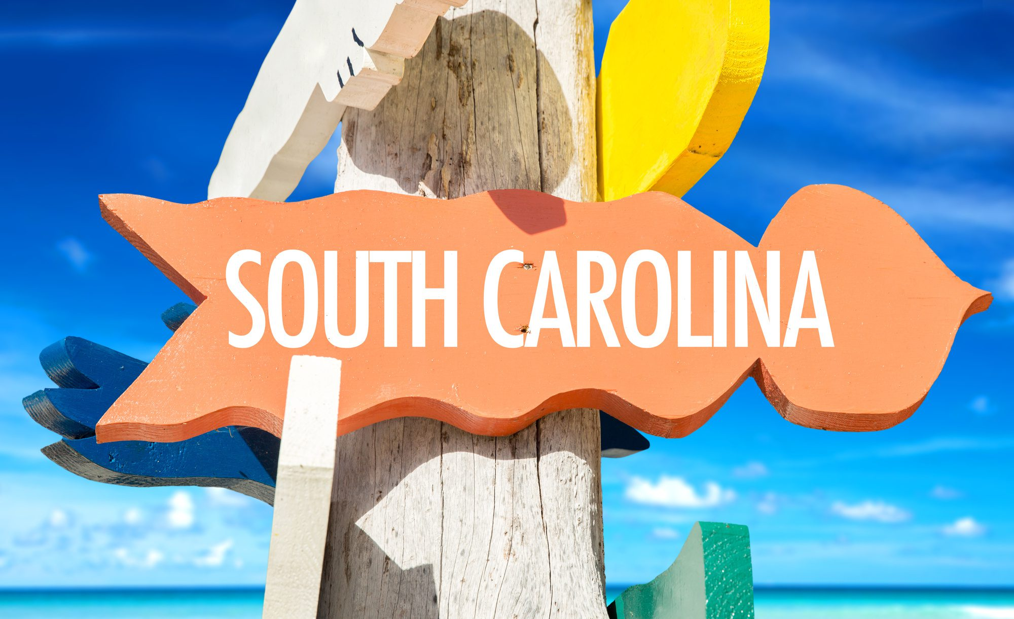 7 Perfect Reasons to Move to South Carolina