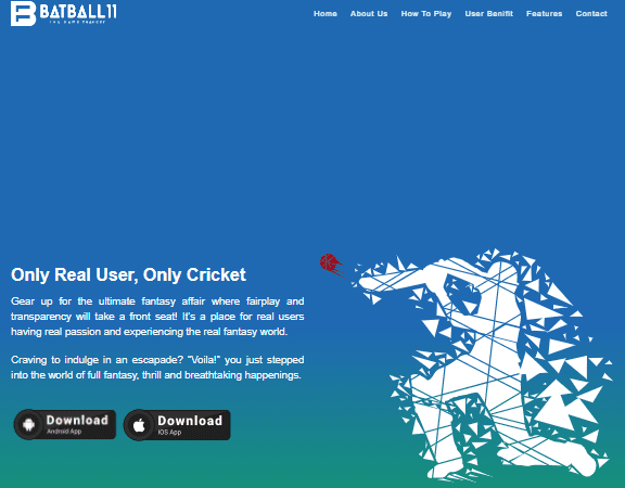 Play fantasy cricket | batball11 fantasy cricket application